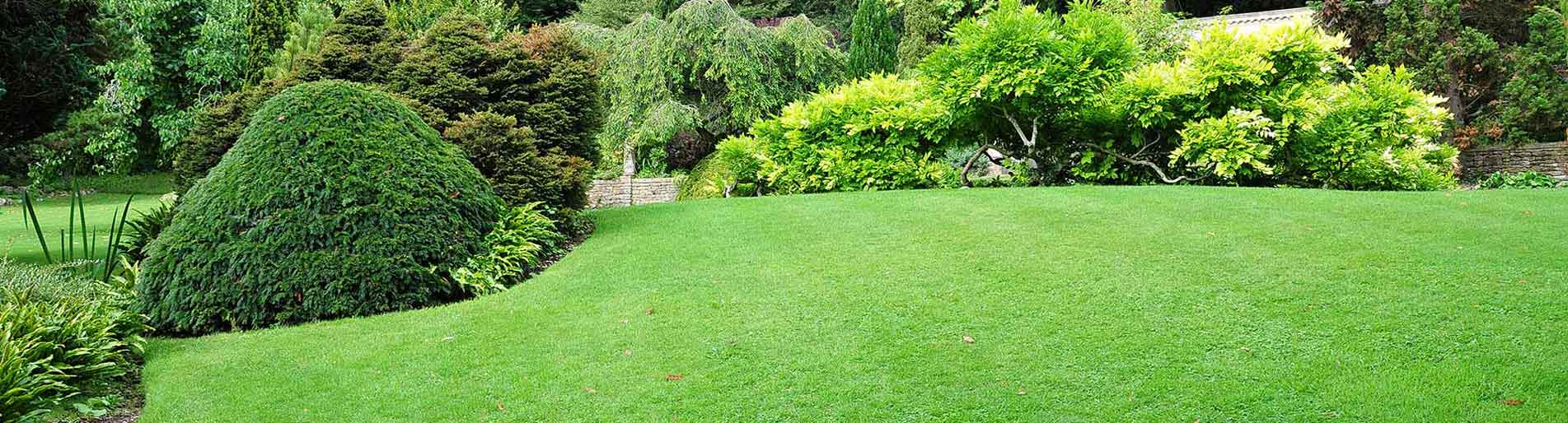 Internet Marketing for Lawn Care Companies